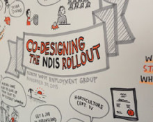 NDIS roll-out